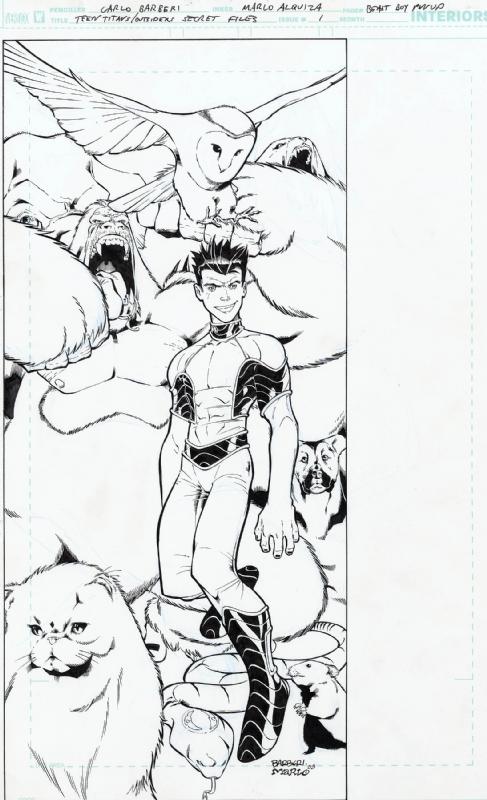 Teen Titans Outsiders Secret Files